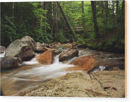 Downstream At The Basin Wood Print by David Gilman