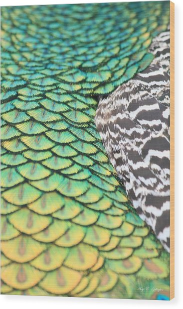 Dragon Scales Wood Print