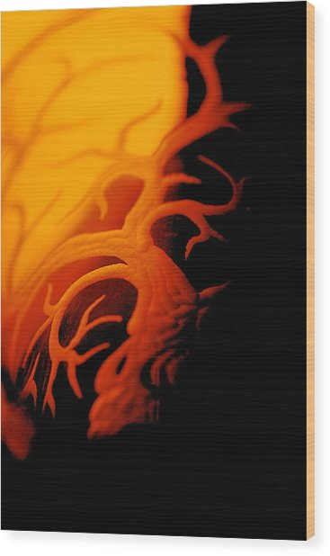 Dragonfire Wood Print