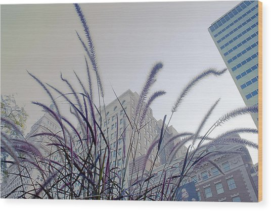 Dreamy City Wood Print