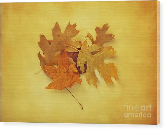 Dried Autumn Leaves Wood Print