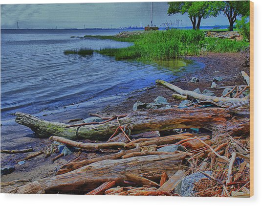 Driftwood On Shore Wood Print