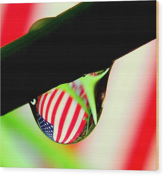 Drip Of America  Wood Print