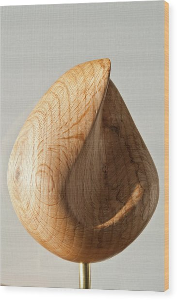 Droplet Wood Print by Peter Hill