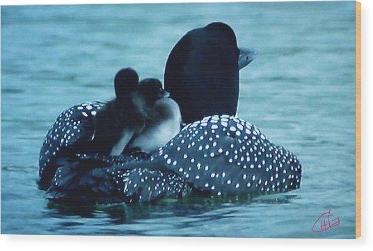 Duck Family Joy In The Lake  Wood Print