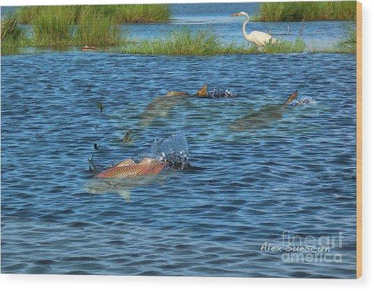 Duck Pond Reds Wood Print