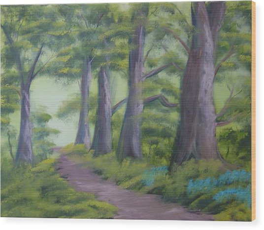Duff House Path Wood Print