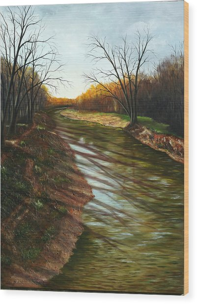 Duffins Creek Ajax Wood Print by Sharon Steinhaus