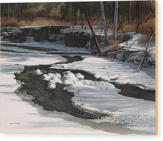 Duffins Creek II Wood Print