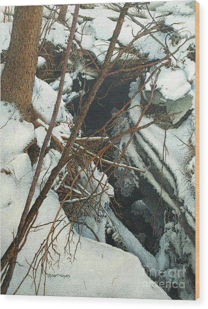 Duffins Creek Wood Print