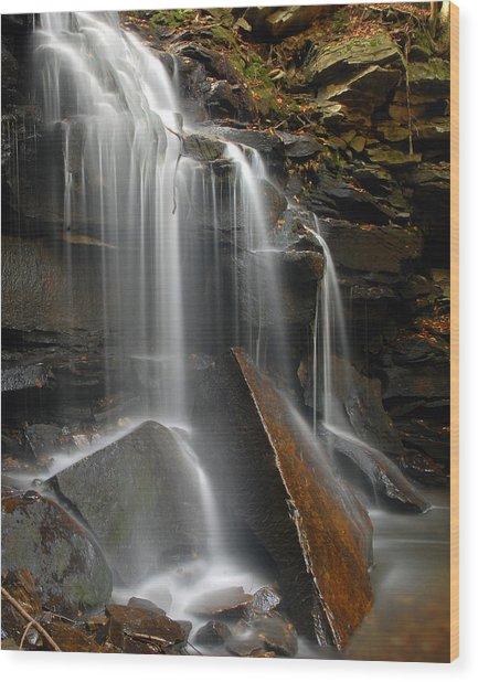 Dutchman Falls Wood Print by Dan Myers