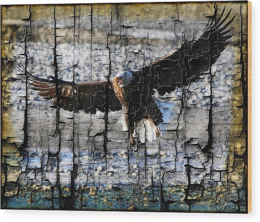 Eagle Imprint Wood Print by Carrie OBrien Sibley