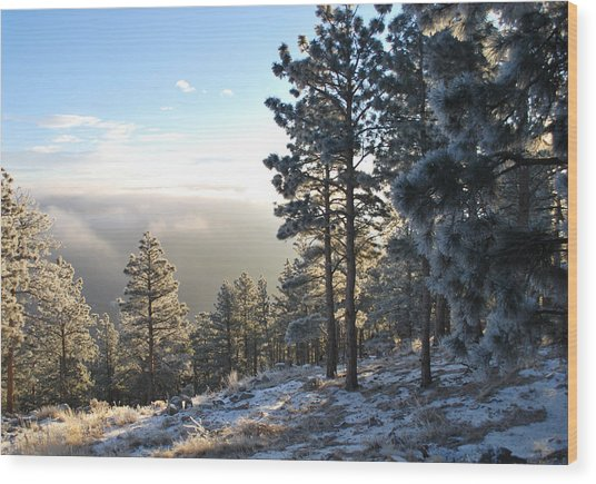 Early Am Above Boulder-photo Wood Print