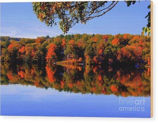 Early Fall Wood Print