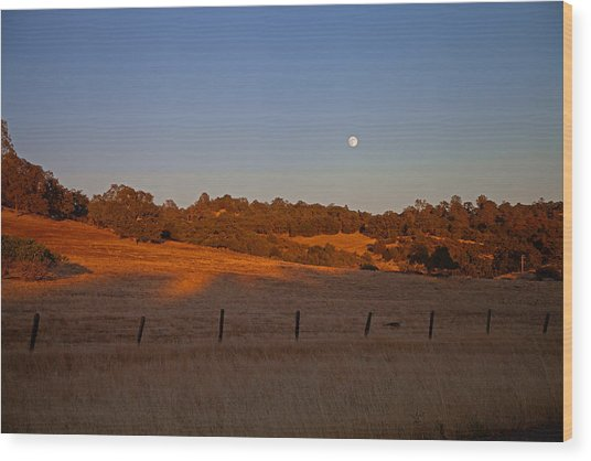 Early Moon Over Campo Seco Wood Print by Joe Fernandez