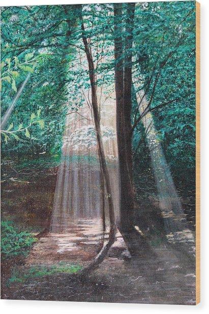 Early Morning Sunrise Wood Print