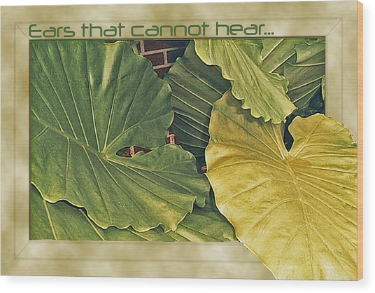 Ears That Cannot Hear... Wood Print by Larry Bishop