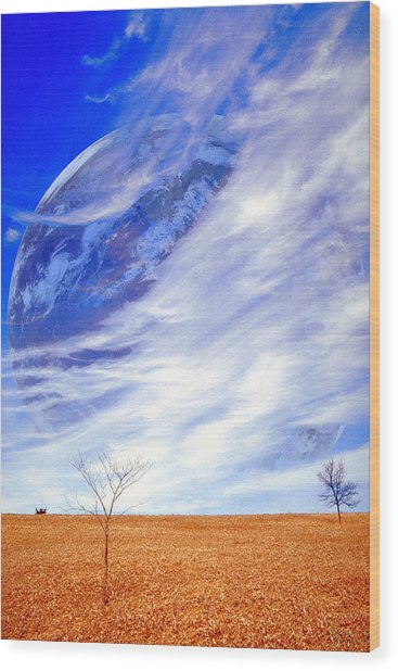 Earth Day Wood Print