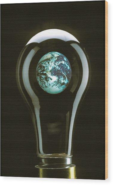 Earth In Light Bulb  Wood Print