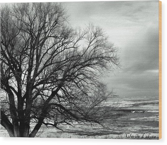 Eastern Plains Of Colorado Wood Print