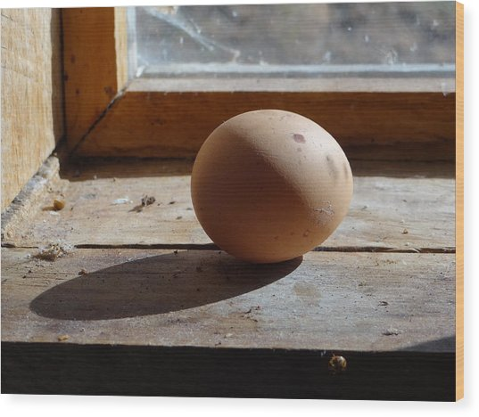 Egg On A Window Ledge Wood Print