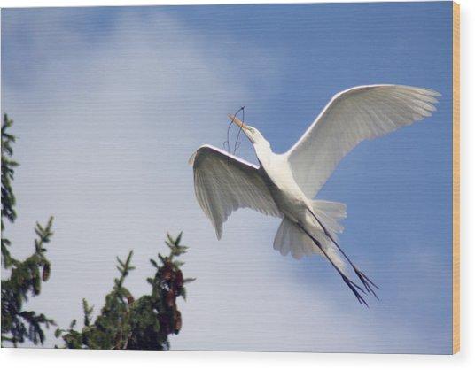 Egret Carrying Stick Wood Print