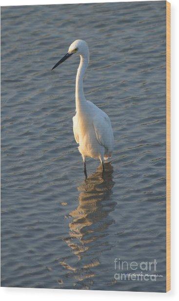 Egret In Marsh Wood Print