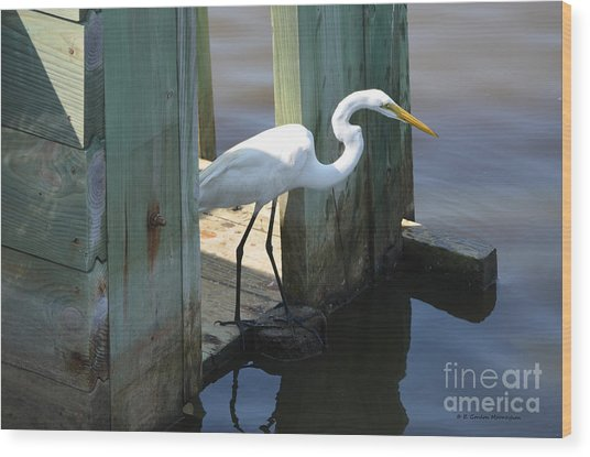 Egret On Rice Trunk Wood Print