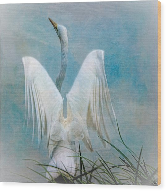 Egret Preparing To Launch Wood Print
