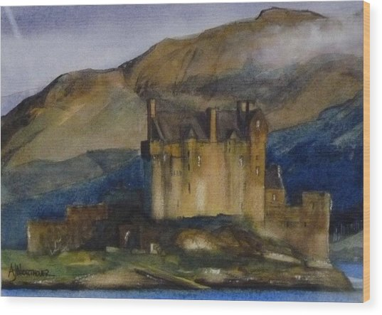 Eilean Donan Castle Wood Print by Tony Northover