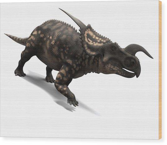 Einiosaurus Dinosaur, Artwork Wood Print by Sciepro