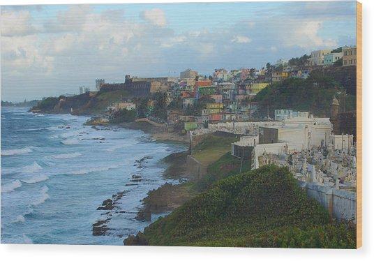 El Morrow With San Juan Seashore Wood Print