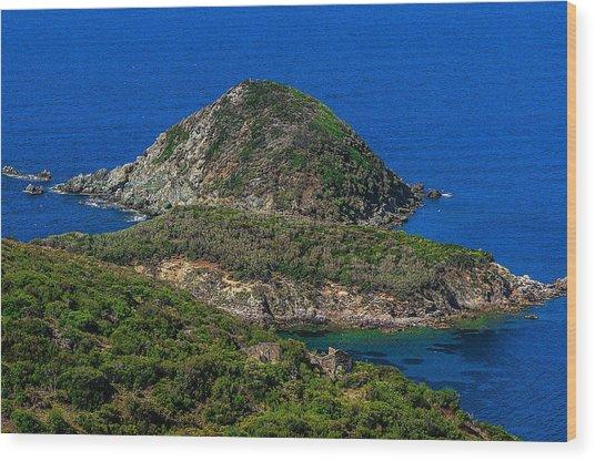 Wood Print featuring the photograph Elba Island - Three Islands With The Ancient Ruins - Ph Enrico Pelos by Enrico Pelos