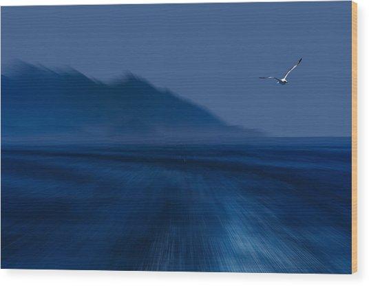 Elba Island - Flying Away - Ph Enrico Pelos Wood Print