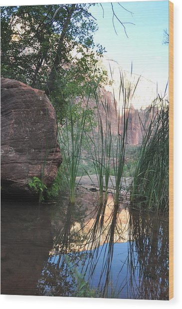 Emerald Pool- Zion National Park Wood Print by Michael Bartlett