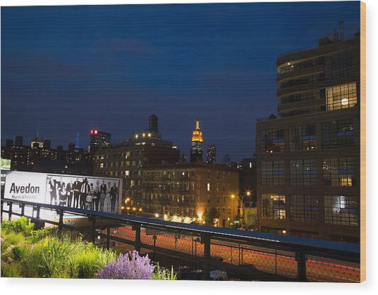 Empire State From High Line Wood Print by John Dryzga