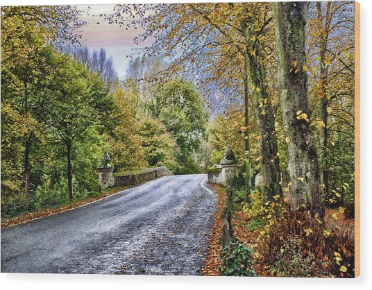 England Country Side Wood Print by Neil Campbell
