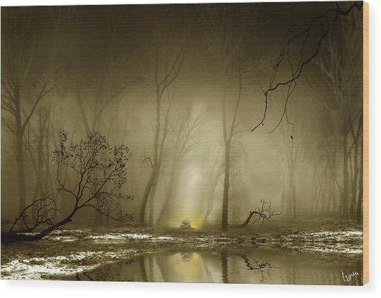 Enigmatic Passage Wood Print by Igor Zenin