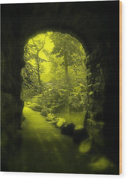 Entrance To Fairyland Wood Print by Maria Scarfone