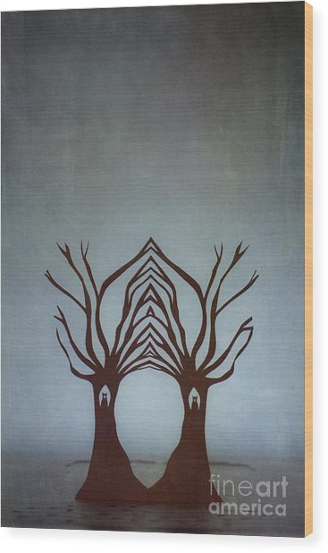 Entwined Wood Print by Catherine MacBride