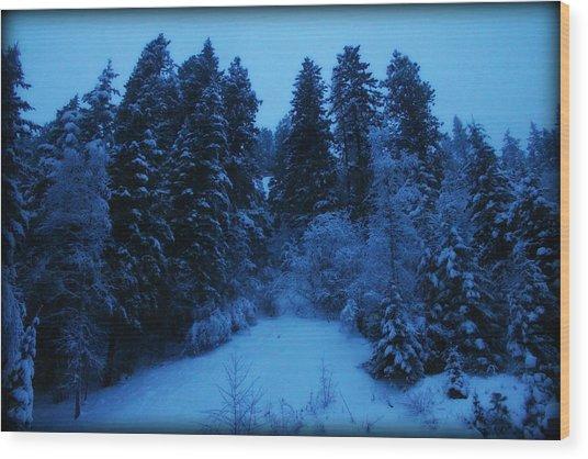 Evening Blue Wood Print by Donna Duckworth