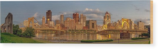 Evening Panorama Wood Print by Jennifer Grover