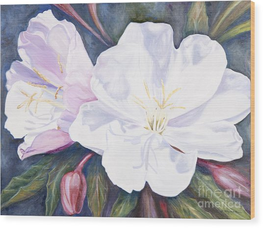 Evening Primrose Wood Print
