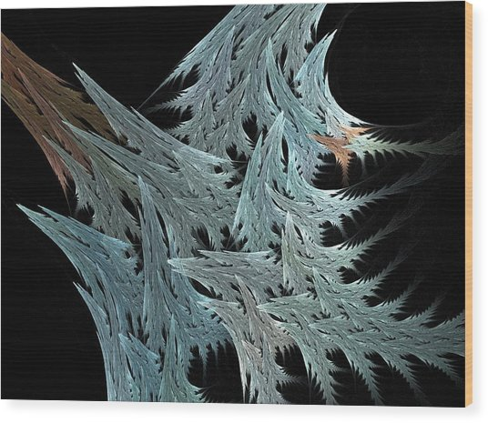 Evergreen Wood Print by Michele Caporaso