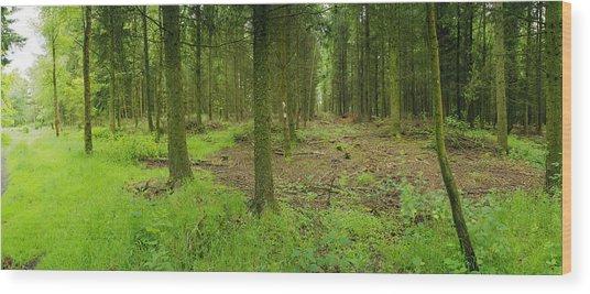 Exmoor Forest Wood Print