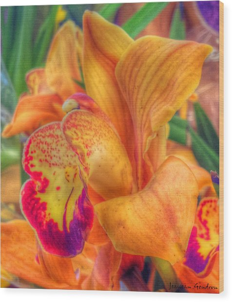 Exotic Embrace Wood Print by Jeanean Gendron