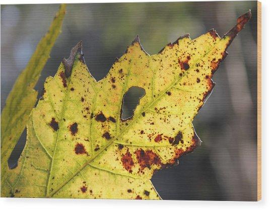 Face Of A Leaf Wood Print