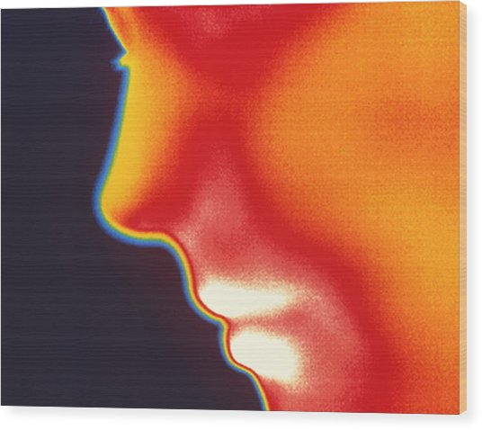 Face Thermogram Wood Print by Tony Mcconnell