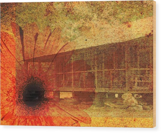 Wood Print featuring the photograph Faded Memories by Judy Hall-Folde