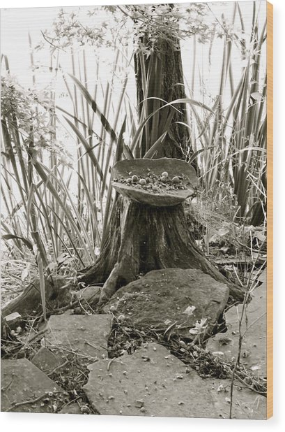 Faerie Offerings Wood Print by Azthet Photography